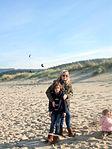 Papaventos na praia do Rostro 4, 5 xaneiro 2013.jpg