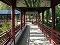 Paradisio jardin chinois4.JPG