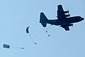 Paratroopers leap from a Cameroonian C-130 transport plane.jpg