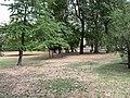 Parc Lefèvre - Livry Gargan - 2020-08-22 - 6.jpg