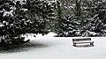 Parc de Bois-Préau sous la neige - panoramio.jpg