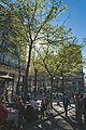 Paris spring - panoramio.jpg