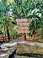 Parque Nacional Barranca del Cupatitzio.jpg