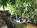 Parque das Águas - panoramio - José Marques de Oliv… (4).jpg