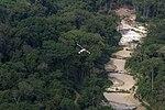 Parques Nacionais do Jamanxim e do Rio Novo, Pará (31181653127).jpg