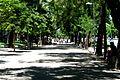 Paseo de Recoletos (14).jpg