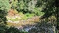 Passadiços do Paiva - Arouca - panoramio (8).jpg