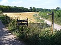 Path Fork by Polesden Lacey - geograph.org.uk - 897398.jpg