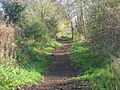 Path along the Wansdyke bank, east of Burnt House.JPG