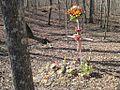 Patsy Cline Memorial Camden TN 13.jpg