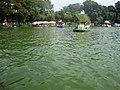 Pedalo, Công viên Đầm Sen.JPG