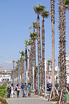 Pedestrians and Palms - Ain Diab - Seaside District - Casablanca - Morocco.jpg
