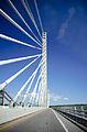 Penobscot Narrows Bridge - Action Shot.jpg
