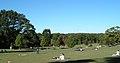 Piedmont Park, Atlanta, GA, USA field.jpg