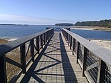 Wooden pier over a beach near a large lake-like reservoir. More of the cost can be seen in the background along with many pine trees.