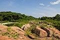 Pigeon Island, Sri Lanka - panoramio (5).jpg