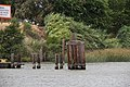 Pilings near Rio Vista, CA (14525408117).jpg