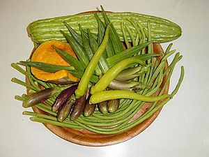 Pinakbet - Pinakbet vegetables; shown are bitter melon, calabaza squash, lady's finger, eggplants, string beans, and chili