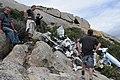 Plane Wreck on Mount Killiecrankie Flinders island - panoramio.jpg