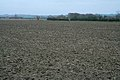 Ploughed field at Gorse Lodge - geograph.org.uk - 302124.jpg