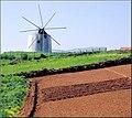 Portugal Mafra Malveira (446617438).jpg
