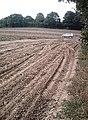Potato Field - geograph.org.uk - 544862.jpg