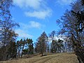 Prielohy v marci - panoramio.jpg