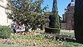 Primavera, Salamanca 01.jpg