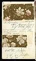 Printer's Sample Book, No. 19 Wood Colors Nov. 1882, 1882 (CH 18575281-7).jpg