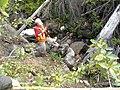 Quarry of the Ancestors Sep 2009 177 (5643939398).jpg