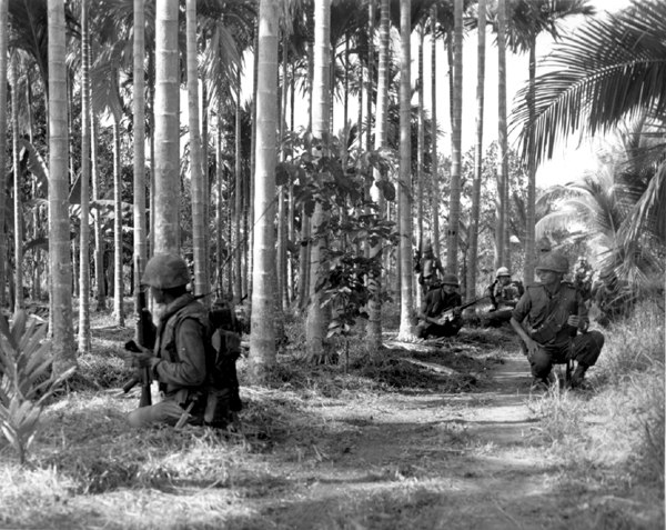 Queen's Cobras Conduct a Search and Sweep Mission in Phuoc Tho, 11-67 2