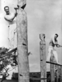 Queensland State Archives 5507 Tree felling contest at the Royal National Show Brisbane c 1958.png