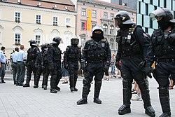 Queer Parade Brno 2008 - policejní zásahová jednotka