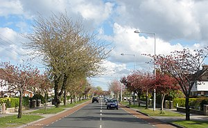 Templeogue - Image: R112 road (Templeville Road)