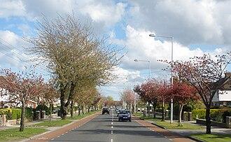R112 road (Ireland) - Image: R112 road (Templeville Road)