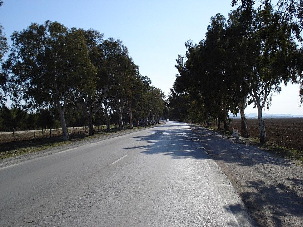 RN 8 - Tunisie