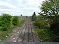 Railway towards Woodley - geograph.org.uk - 1279216.jpg