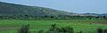 Rajastan - Views from an Indian Western Railway journey on a Monsoon Season (7).JPG