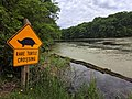 Rare Turtle Crossing Sign (27864782427).jpg