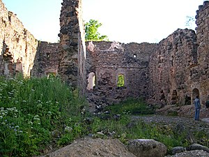 Rauna Castle - Rauna Castle in 2008