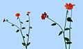 Red CGI Flowers.jpg