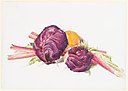 Red Cabbages, Rhubarb and Orange MET DP234202.jpg