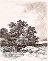 Remigius Adrianus van Haanen 095 (40407104242).jpg