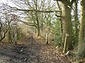 Restricted byway, Ash, Surrey - geograph.org.uk - 111196.jpg