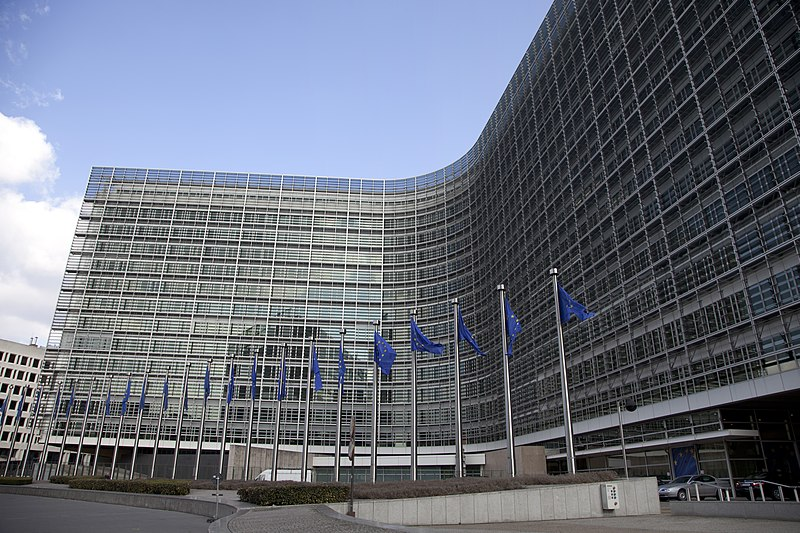 File:Reunión con Vicepresidenta de la Comisión Europea y Alta Representante para la Política Exterior y de Seguridad de la UE (6856953422).jpg