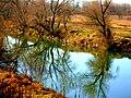Rijeka Ukrina u jesen.jpg