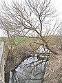 River Blyth - geograph.org.uk - 1800081.jpg