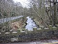 River Irwell at Broadclough - geograph.org.uk - 673870.jpg