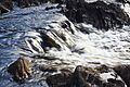 River Ord (8016151324).jpg