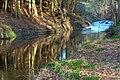 River Rye - geograph.org.uk - 662698.jpg